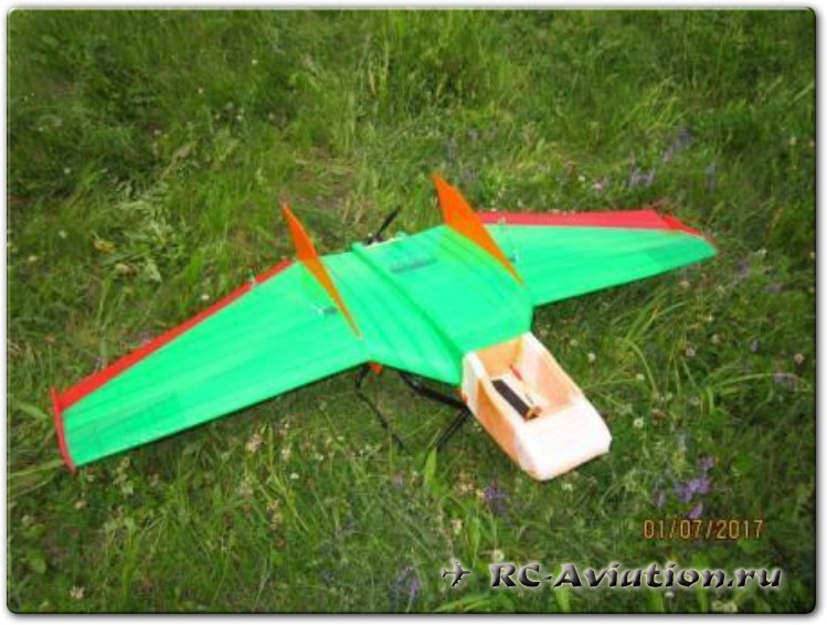 Ritwing-Drak-29.JPG